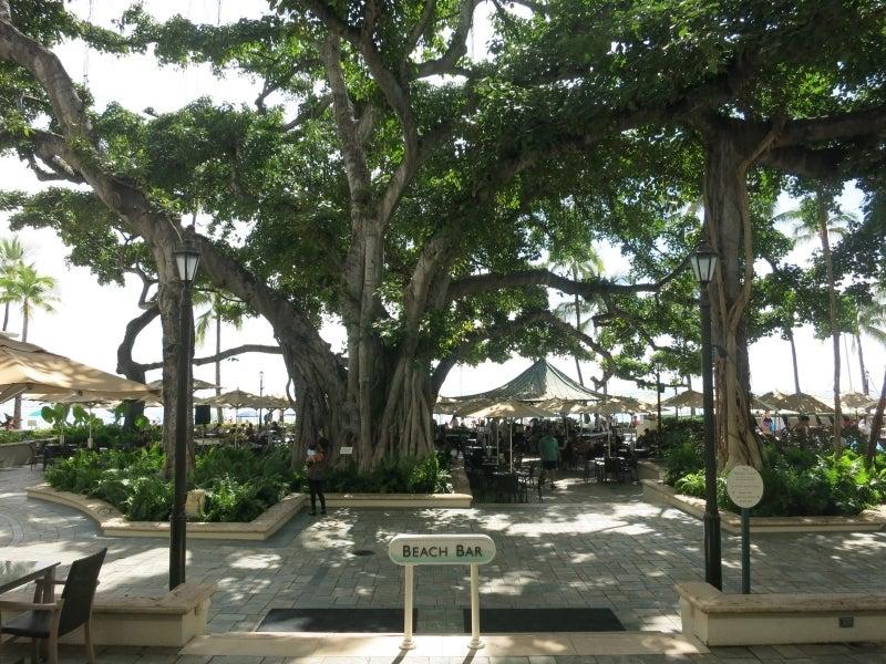 世界を旅する年収1億円ブロガー 川島和正オフィシャルブログ Powered by Ameba-Hawaii9-7