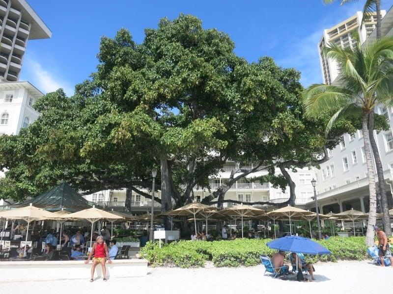 世界を旅する年収1億円ブロガー 川島和正オフィシャルブログ Powered by Ameba-Hawaii9-8
