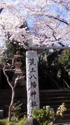 $バスとタクシーの予約サイト 公式ブログ-sakura