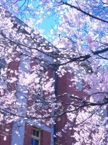 $Love&Light ☆一歩を踏み出す勇気を☆-130322_123749.jpg