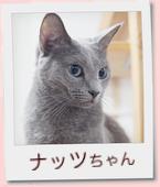 11_prof_ナッツ