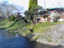 「おいしい自然がいっぱい」/京都みどり農園-KC3O0125.jpg