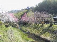 「おいしい自然がいっぱい」/京都みどり農園-KC3O0122.jpg