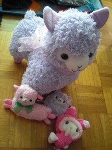Renoyukiのブログ-alpacas & my melody