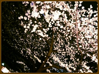 混沌雑記 星野大輔-PicsArt_1364269891769.jpg