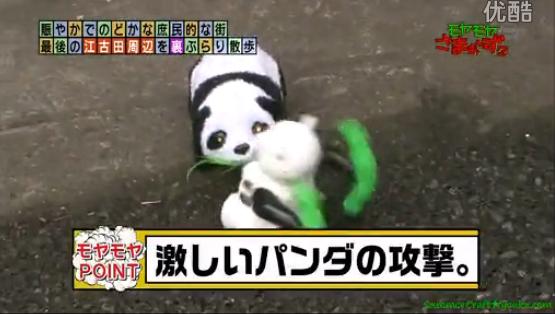 kazukunの神出鬼没-激しいパンダの攻撃