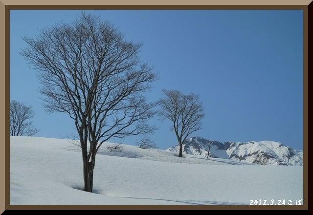 ロフトで綴る山と山スキー-0324_1436
