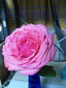 $Love&Light ☆一歩を踏み出す勇気を☆-130323_225537.jpg