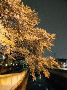 塗装工事で喜ばれる仕事をして半世紀。「建物の困った」も塗装でOK!          板橋の塗装店主のブログ-yozakurano1