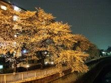 塗装工事で喜ばれる仕事をして半世紀。「建物の困った」も塗装でOK!          板橋の塗装店主のブログ-yozakurano2