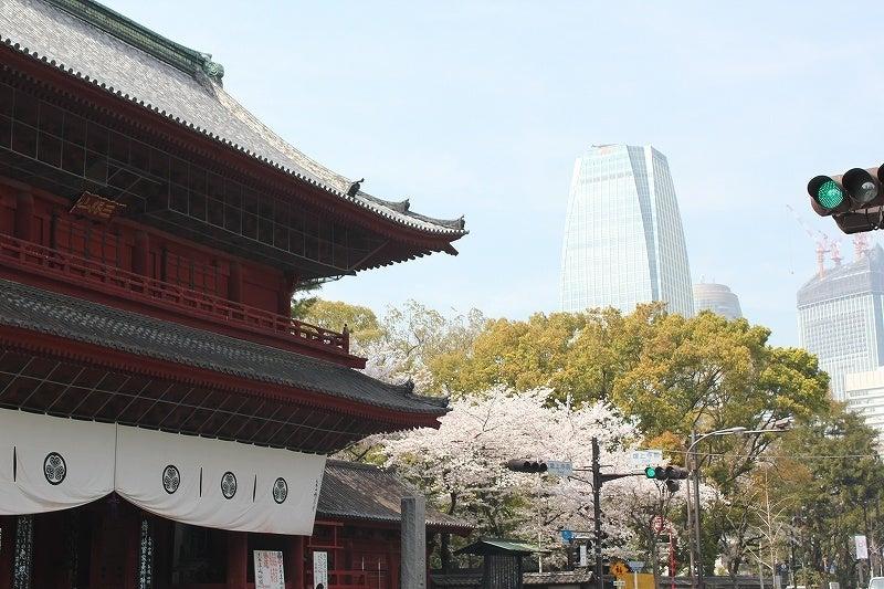 特選街情報 NX-Station Blog-増上寺周辺も桜満開