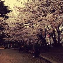 春だぜよぉ~★