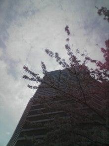アットホーム・ダッドのツインズ育児日記-2013-03-28_13-08.jpg