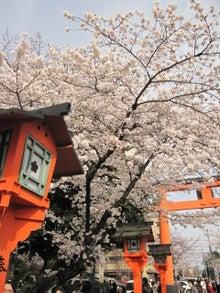 DAISY*DIARY-平野神社4