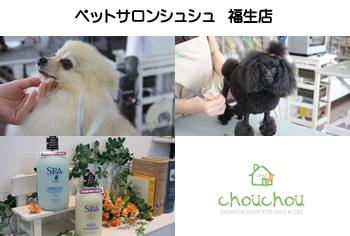 $ペットショップ ペットサロン トリミングの「chouchou」福生店