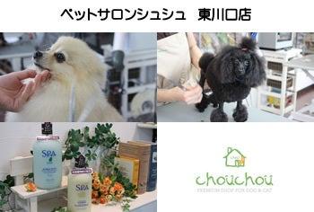 $ペットサロン・トリミングのchouchou東川口店ブログ