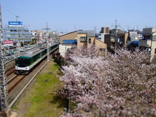TG625桜02