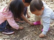 $愛知県みよし市の野外自主保育「みよし もり・そら」のブログ-縄跳びの跡地で発見!BB弾必死で拾ってます