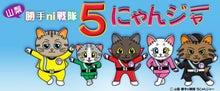 $「猫やとらじ」の十猫十色