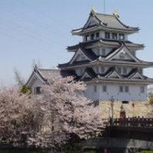 墨俣一夜城の桜が20…