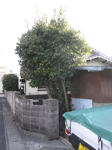北九州市小倉北区キッチンリフォーム