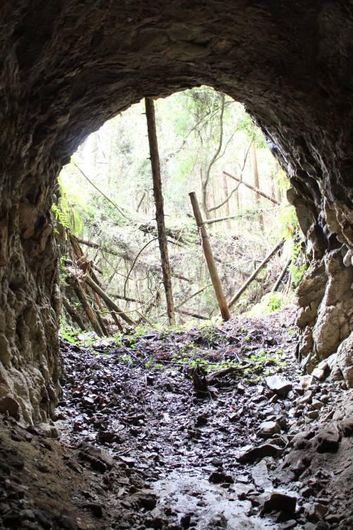 道にあるちょっと古いもの-(仮称)旧西琳寺第二隧道