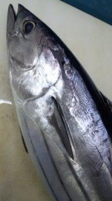 ネコも知らない魚の味-130214_055942.jpg
