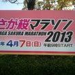 さが桜マラソン201…
