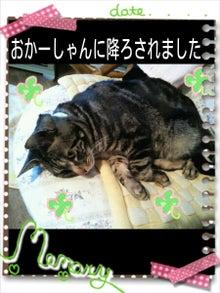 毎日はっぴぃ気分☆-PicsArt_1365399217752.jpg