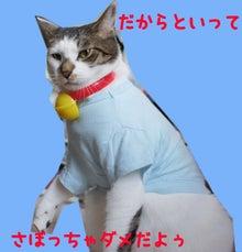 『猫じるし』のブログ-6