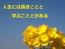 【本気で成功したい方・自分を変えたい方】必見!潜在意識のトレーナーによるセルフイメージ改革@福岡・九州-菜の花