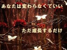 【本気で成功したい方・自分を変えたい方】必見!潜在意識のトレーナーによるセルフイメージ改革@福岡・九州-蝶