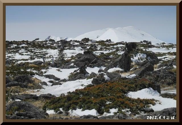 ロフトで綴る山と山スキー-0409_1149
