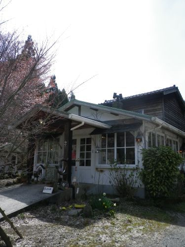 coconutのcafe日記 in福岡