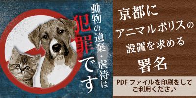 $杉本彩オフィシャルブログ 杉本彩のBeauty ブログ Powered by Ameba