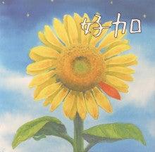 $好加(よしか)の名古屋路上ライブ日記