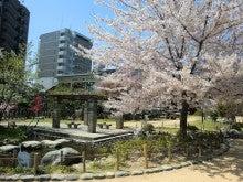 赤と黒-桜井公園⑤