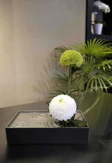 $日本のもの、こと  桃兎の部屋-Hana-koyomi雑貨