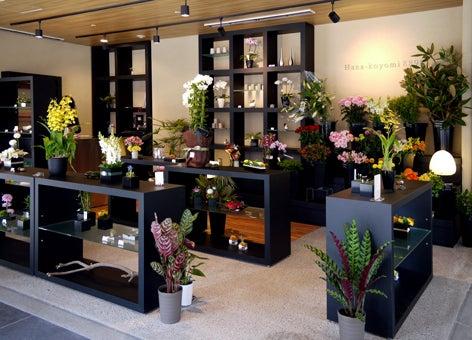 $日本のもの、こと  桃兎の部屋-Hana-koyomi店内