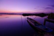 うさぎの音楽談議-印旛沼をきれいにしよう!