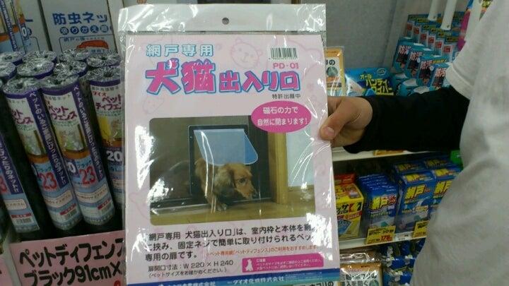 SUZUKI SHOHKAI-1365860417814.jpg