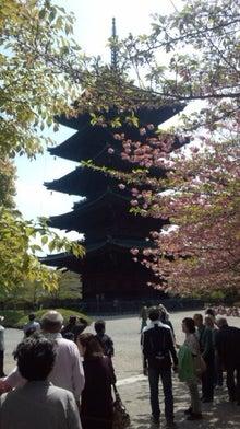 顕密寺のブログ-130415_110634.jpg