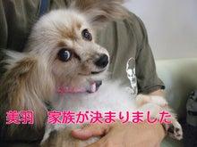 ちび助ママのブログ-美羽