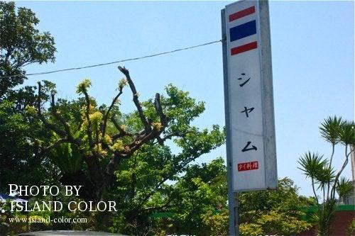 Natural island okinawa