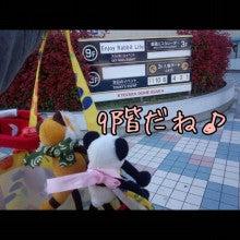 うさぎとパンダと-Camely_20130414_152636.jpg