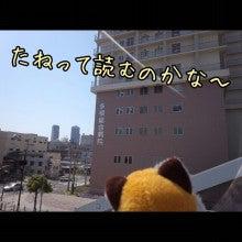 うさぎとパンダと-Camely_20130415_100927.jpg