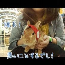 うさぎとパンダと-Camely_20130415_101113.jpg