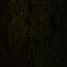 携帯写真ブログ-2013041722180000.jpg