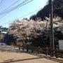 松江と出雲と大田の往…