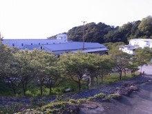 神戸のカラーリスト スタイリスト  トータル素敵プロデューサー☆みつこのブログ-海ゆう庭